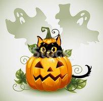 Black Cat IN A Halloween Pumpkin and stock vectors.