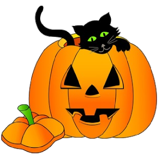 Cat Pumpkin.