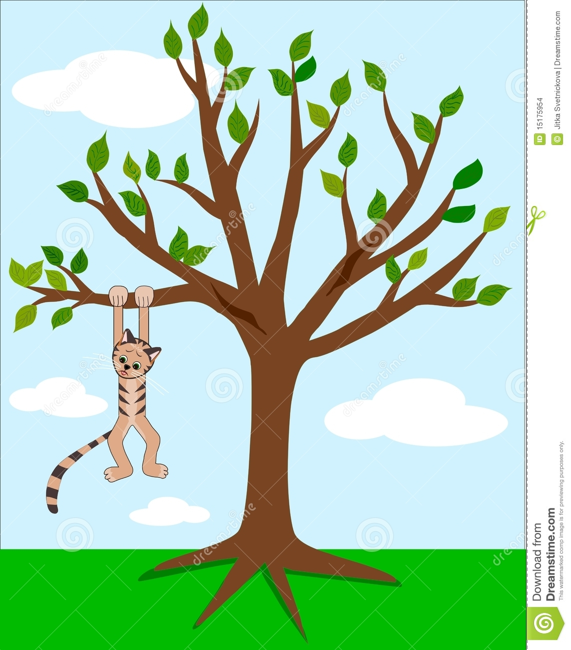 Cat And Tree Stock Images.