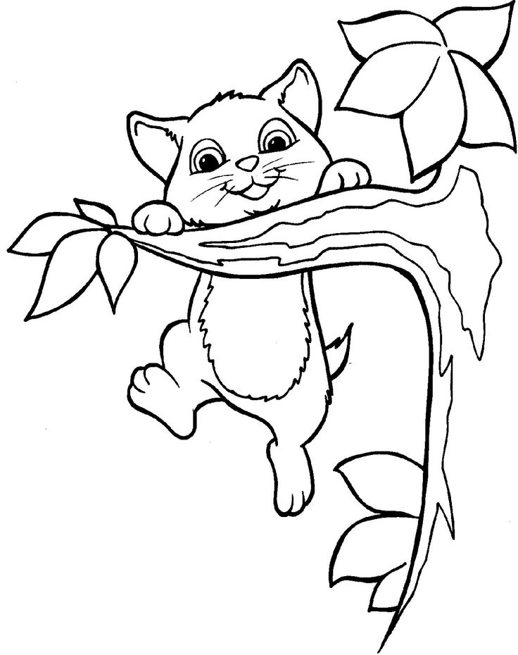 Cat in tree clipart.