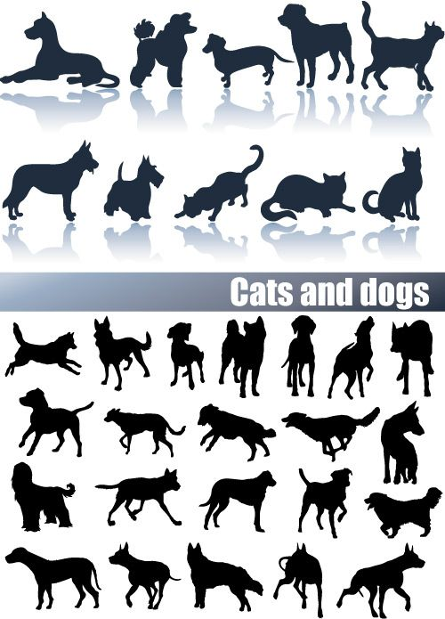 1000+ images about Cat vector on Pinterest.
