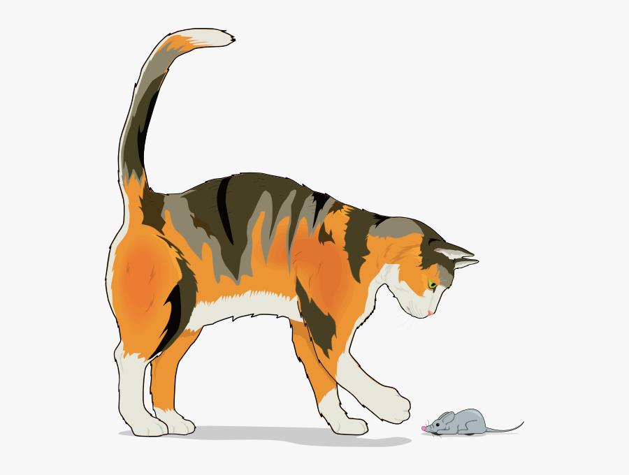 Transparent Cats Clipart Png.