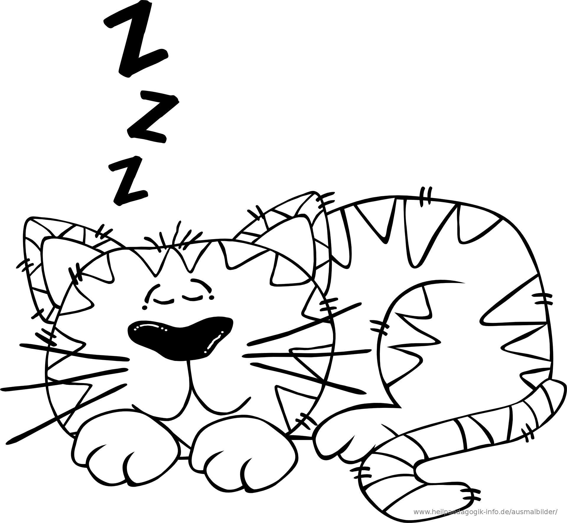 Cat Nap Clip Art.
