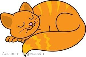 Cat nap clipart.