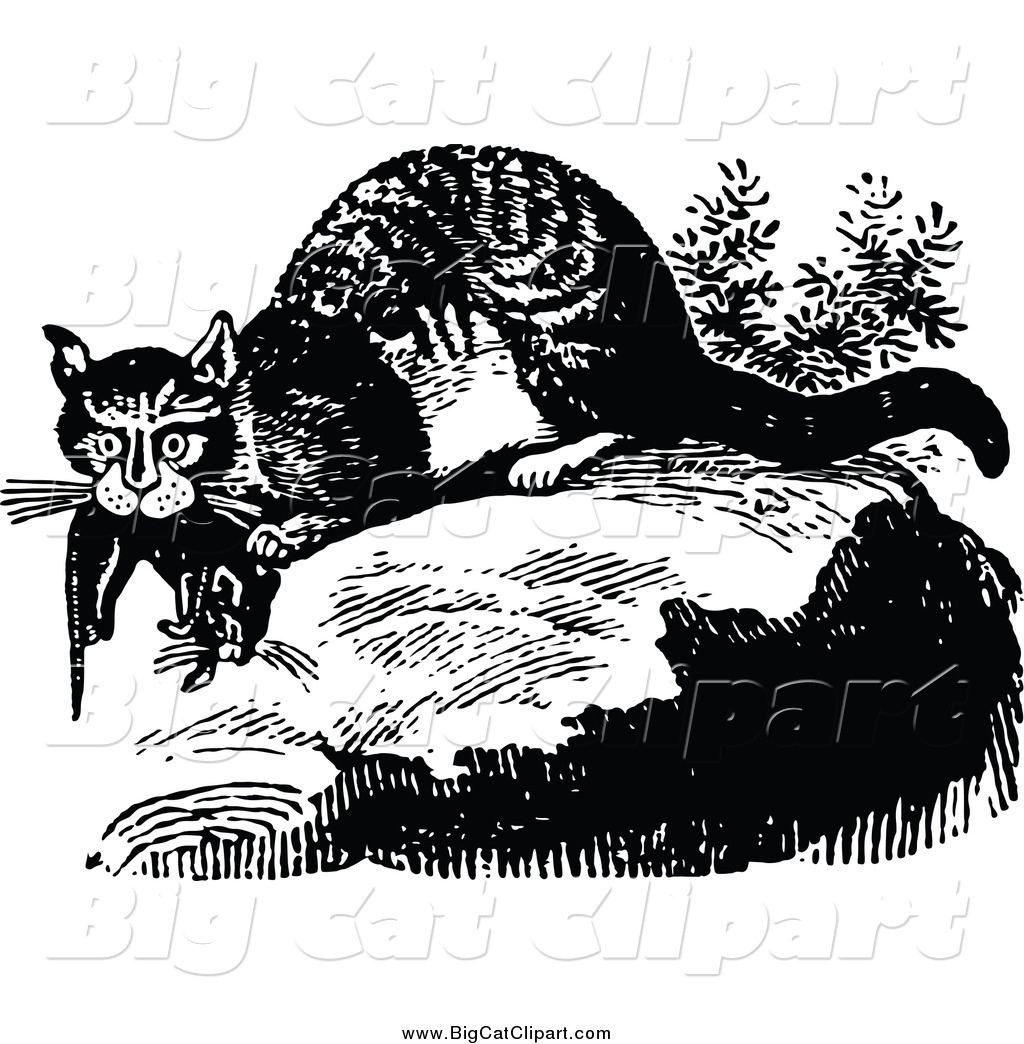Big Cat Vector Clipart of a Black and White Wild Cat with Prey by.