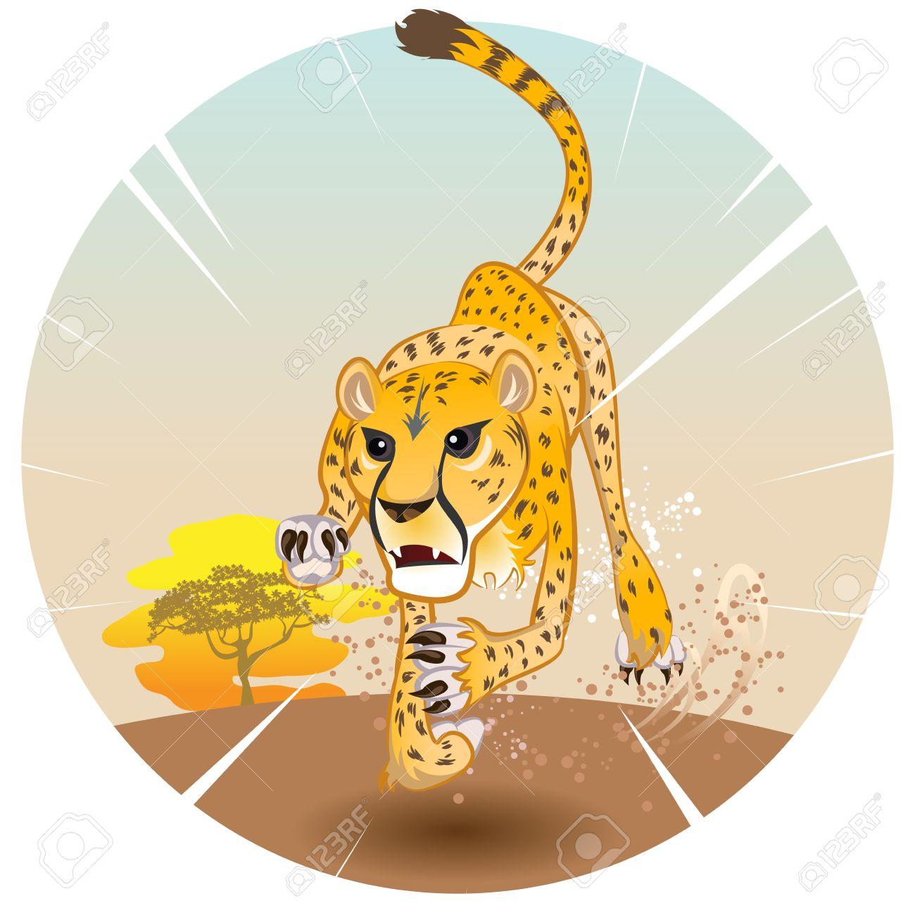 Cheetah King Of Speed In Pursuit Of Prey On Savannah Royalty Free.