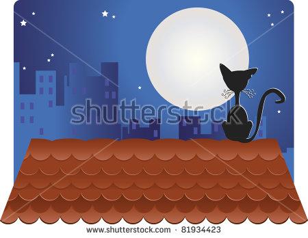 Night Cat Roof Stock Photos, Royalty.