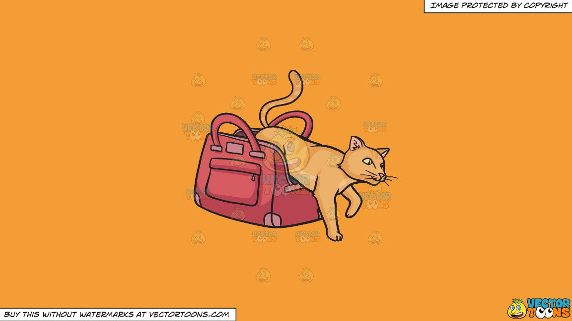 Clipart: Let The Cat Out Of The Bag on a Solid Deep Saffron Gold F49D37  Background.