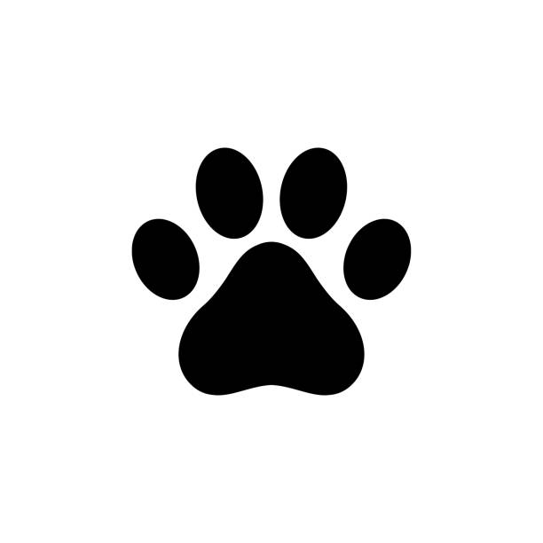 Best Cat Paw Illustrations, Royalty.
