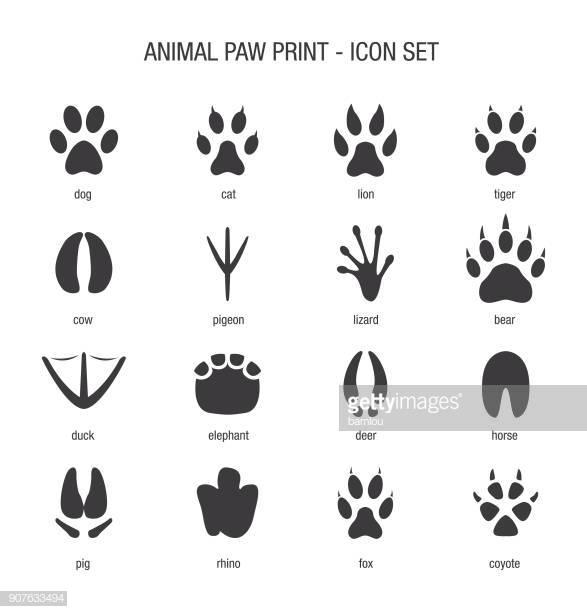 60 Top Paw Print Stock Illustrations, Clip art, Cartoons, & Icons.