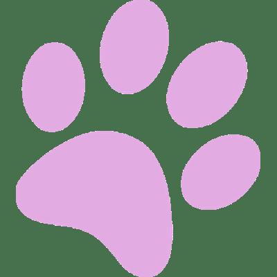 Cat Paw Print transparent PNG.