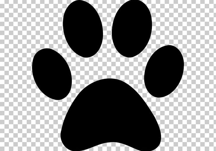 Cat Paw Dog Cougar PNG, Clipart, Animals, Black, Black And White.