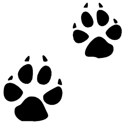 Cat Paw Print transparent PNG.