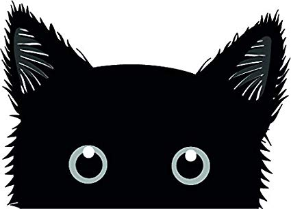 Amazon.com: Cute Adorable Peeking Kitty Cat Kitten Cartoon.