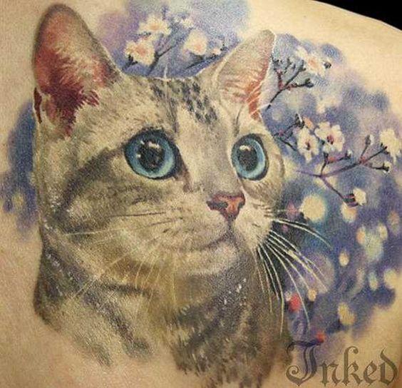 24 wundervolle Katzen.