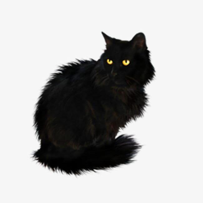 Black Cat PNG, Clipart, Animal, Black, Black Cat, Black Clipart, Cat.