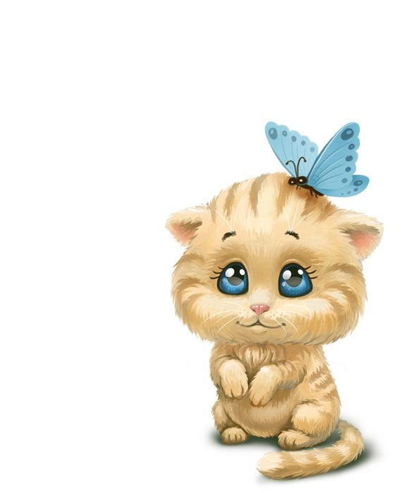 1000+ images about gatos on Pinterest.