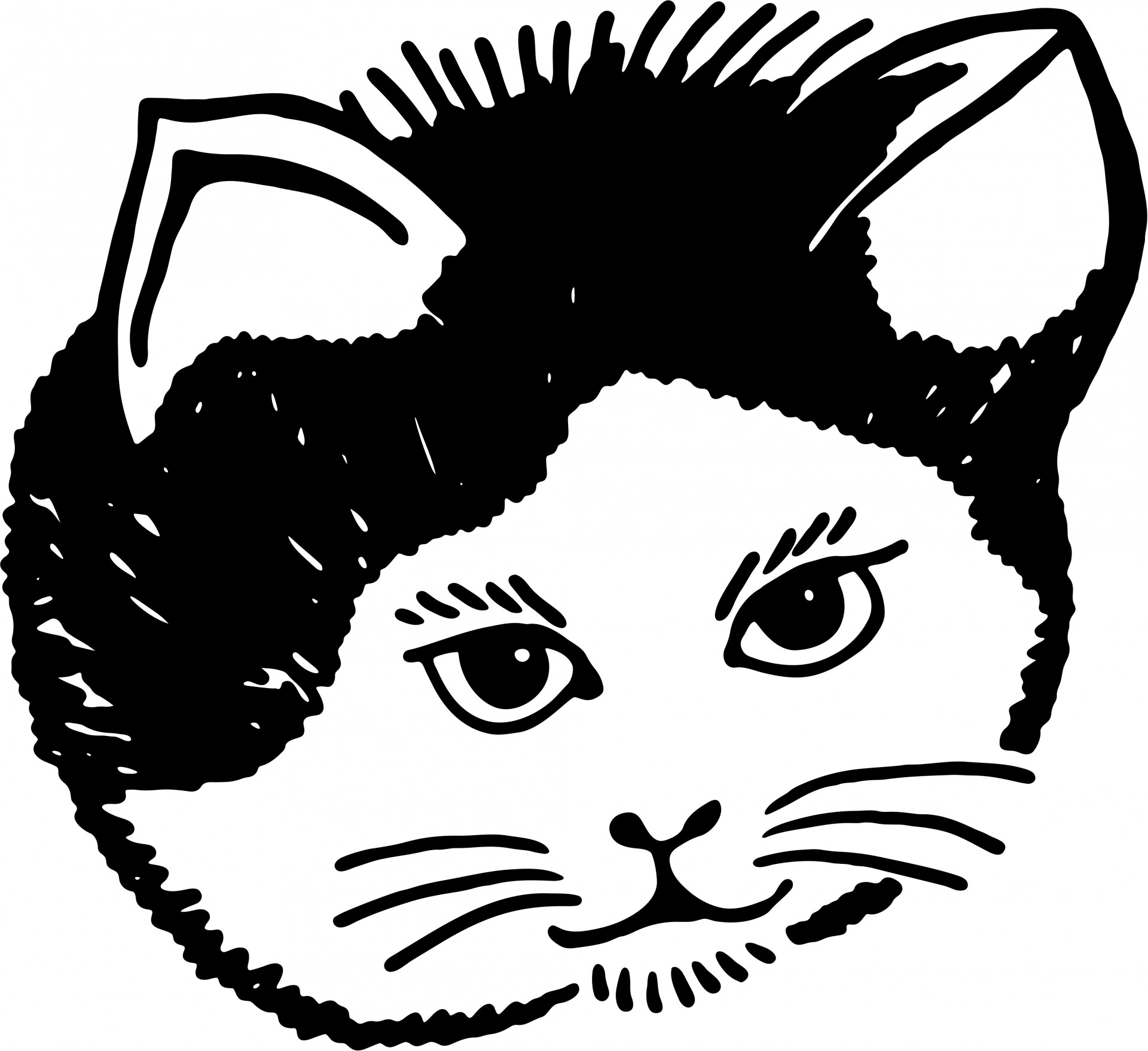 Cat Portrait Clipart Free Stock Photo.