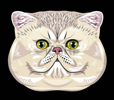 Persian cat clipart.