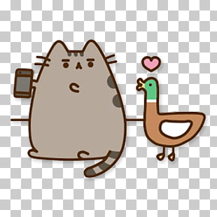 38 cat Selfie PNG cliparts for free download.