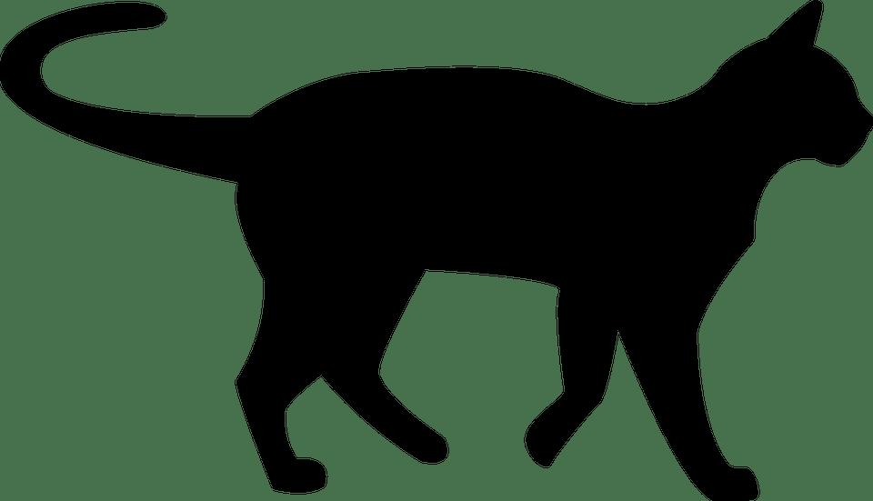 Black Cat Silhouette transparent PNG.