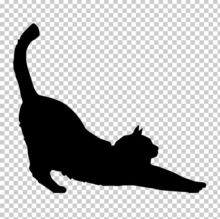 Black Cat Silhouette Kitten PNG, Clipart, Animals, Black, Black And.