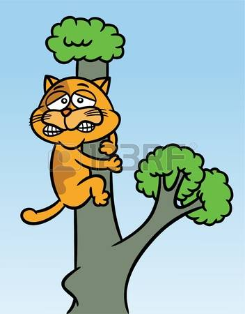 Cat Stuck In Tree Stock Photos Images. Royalty Free Cat Stuck In.