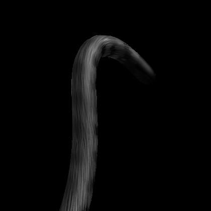 Grey Cat Tail.