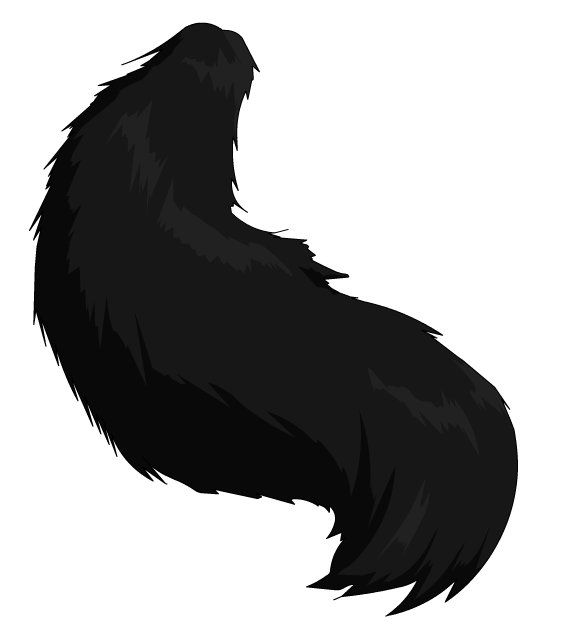 Cat Tail Png.