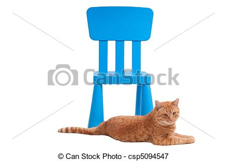 Picture of Cat and chair.