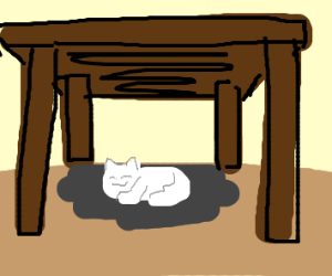 the cat is under the table.