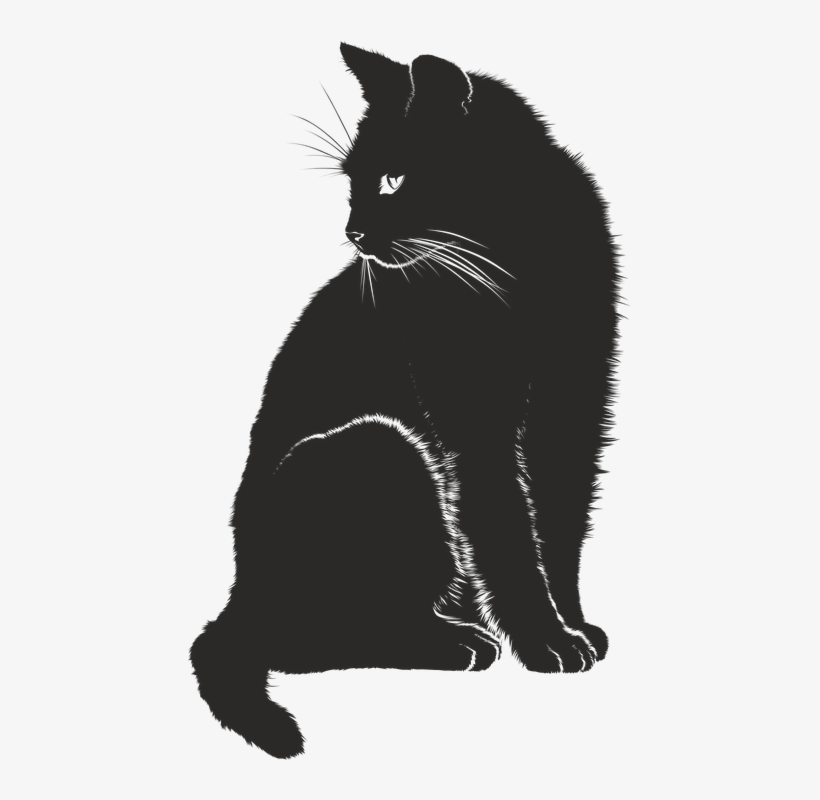 Image Result For Cat Vector.