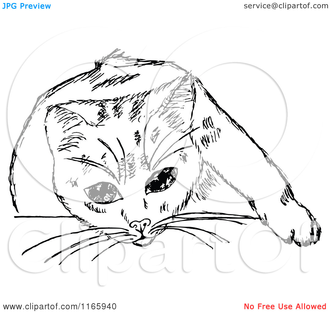Clipart of a Retro Vintage Black and White Cat 6.