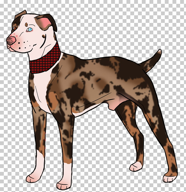 Dog breed American Pit Bull Terrier Art, catahoula PNG.