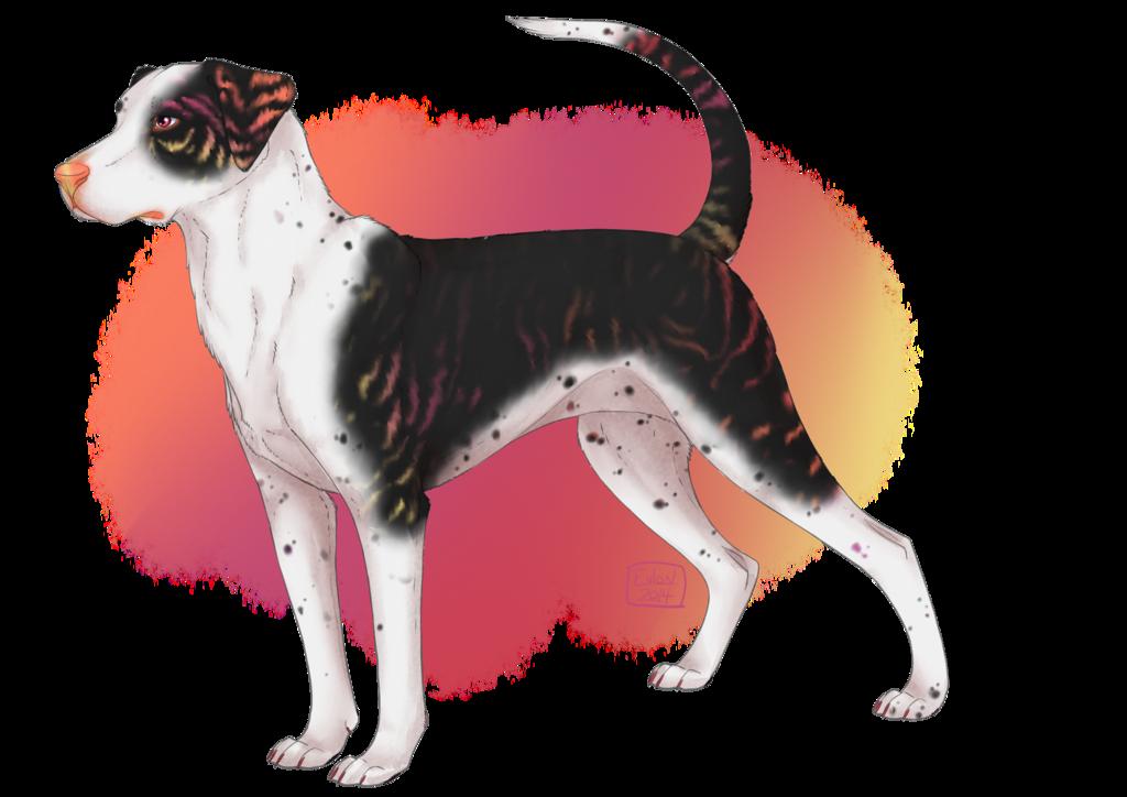 Dog breed Louisiana Catahoula Leopard dog Rat Terrier Art.