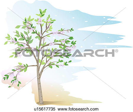 Clipart of trees, tree, plants, Indian bean tree, catalpa, tree.
