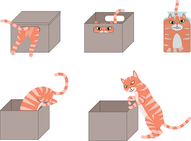 724 Free Cat free clipart.
