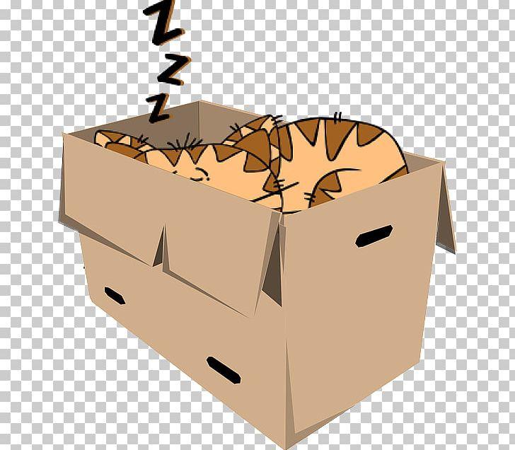 Cat Kitten PNG, Clipart, Animals, Black Cat, Box, Cardboard.