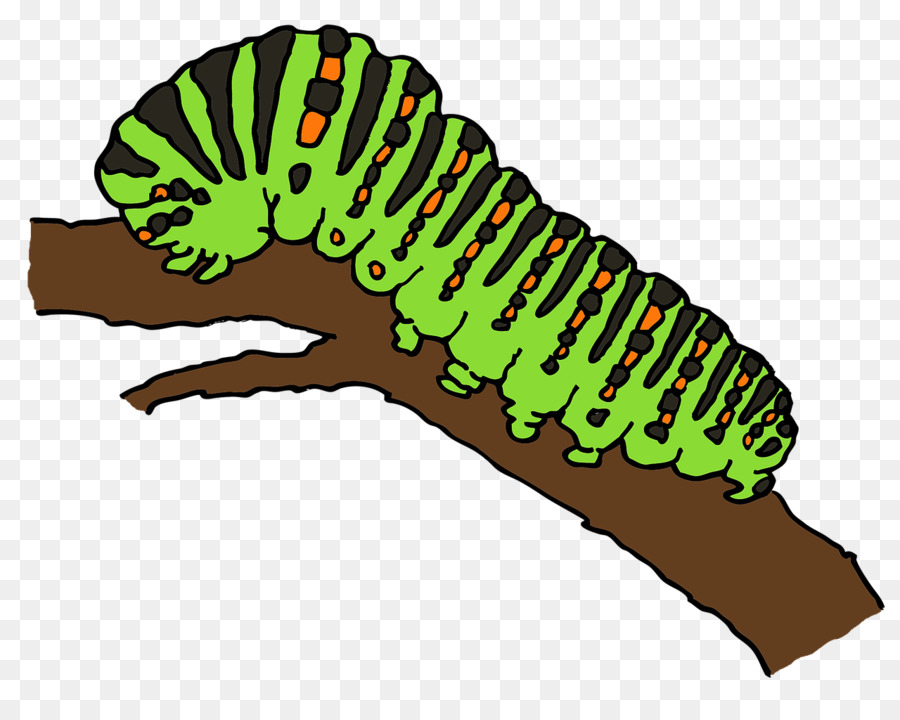 Caterpillar Cartoon clipart.