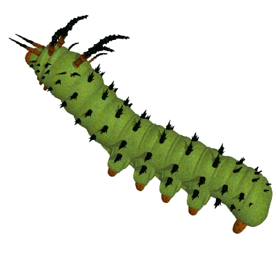 Very Hungry Caterpillar Clipart.
