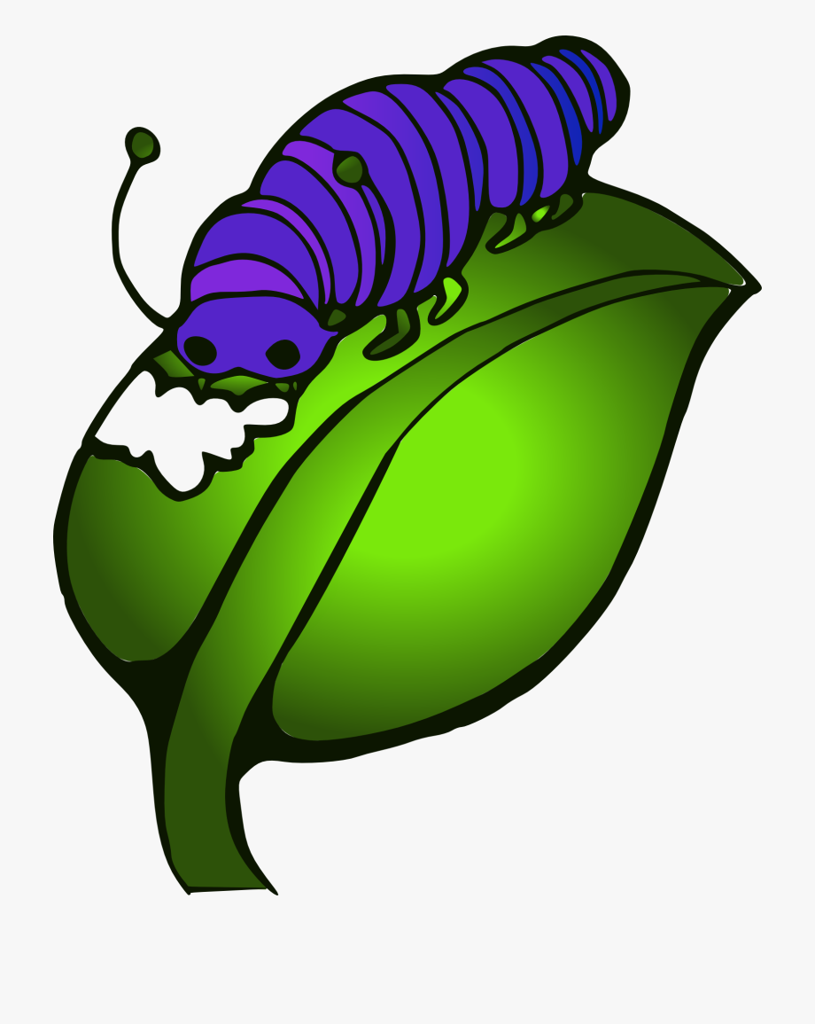 Clipart,painted Purple Caterpillar Eating Leave.