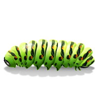 Download Caterpillar Free PNG photo images and clipart.