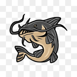 Catfish PNG.