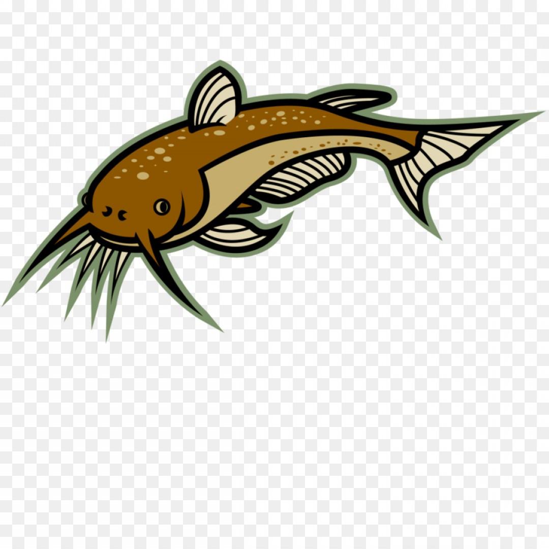 Png Catfish Clip Art Catfish Cliparts.