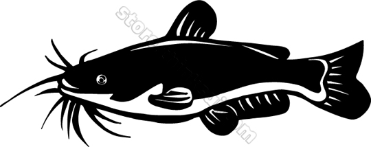 Free Catfish Clipart.
