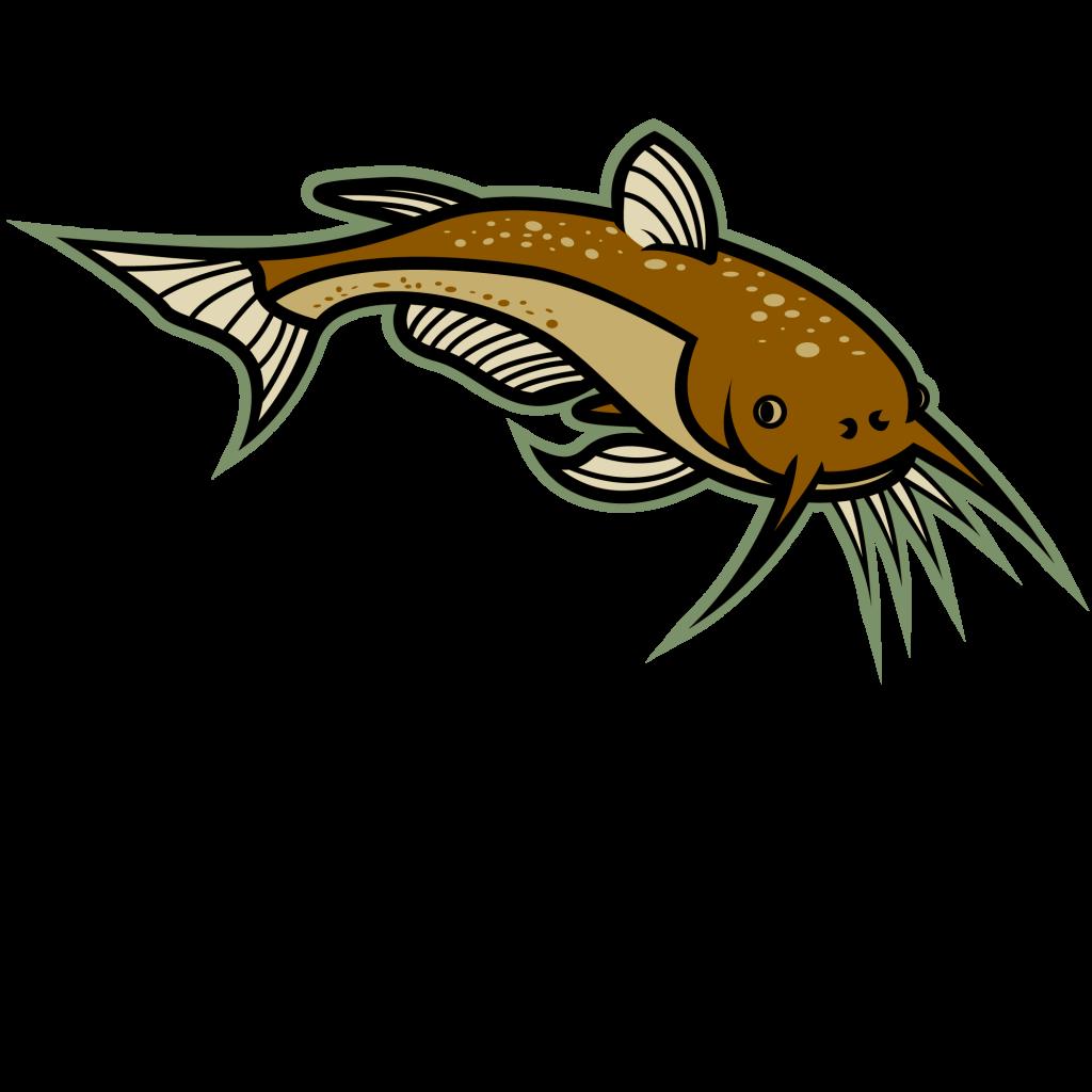 Free Catfish Cliparts, Download Free Clip Art, Free Clip Art.