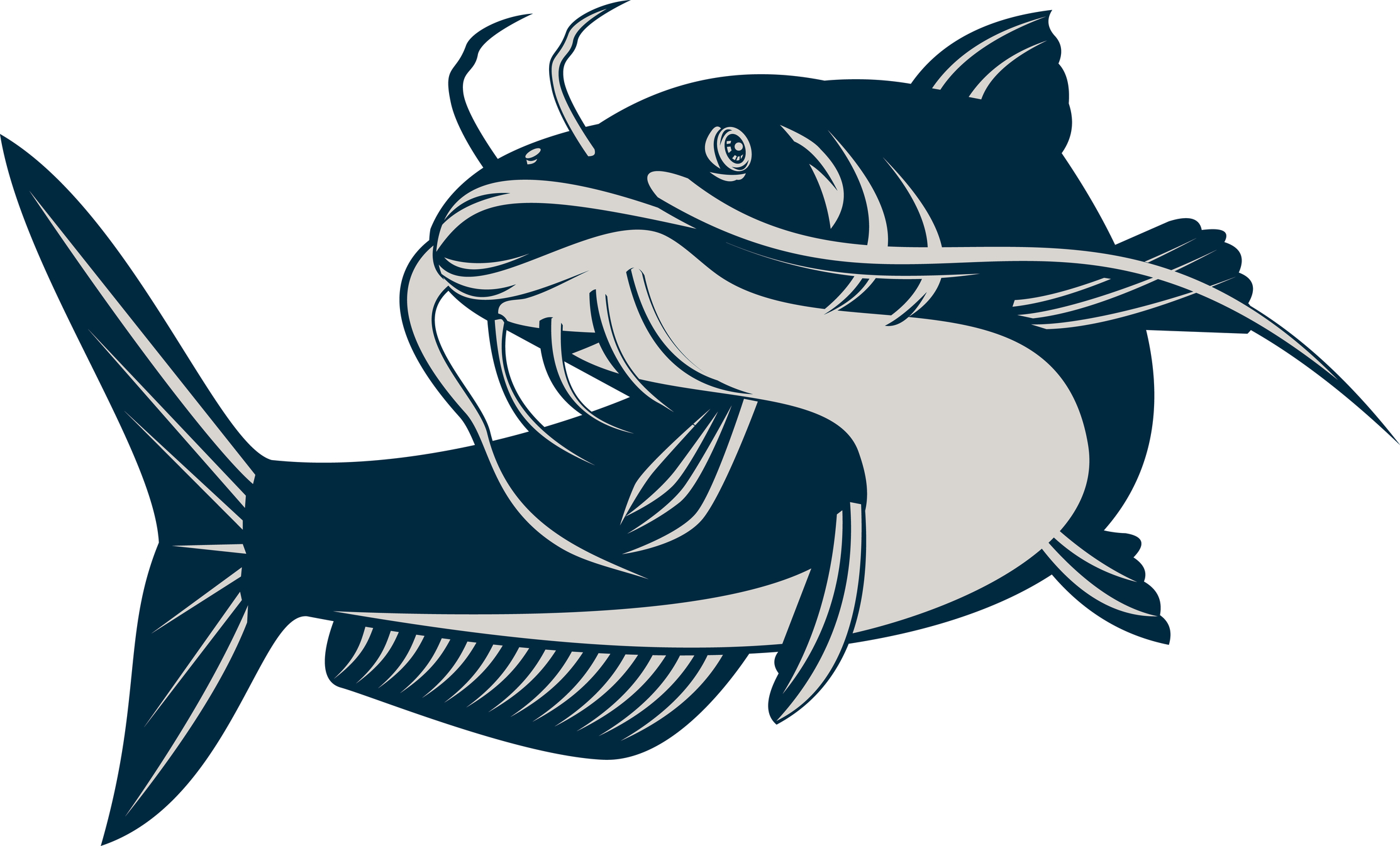 269 Catfish free clipart.