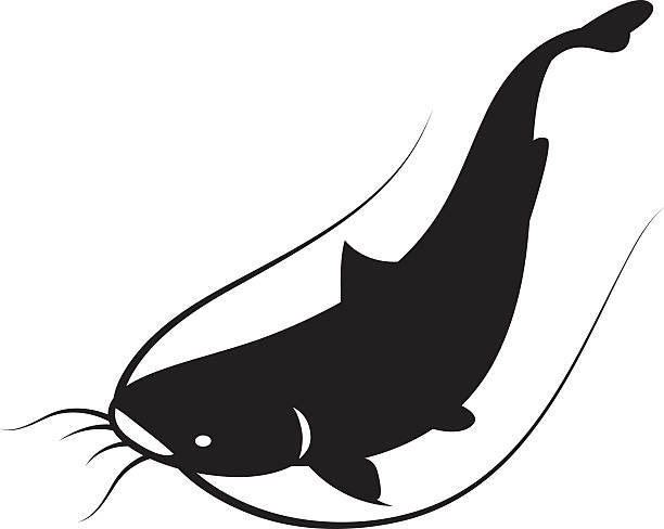 Catfish clipart 4 » Clipart Station.