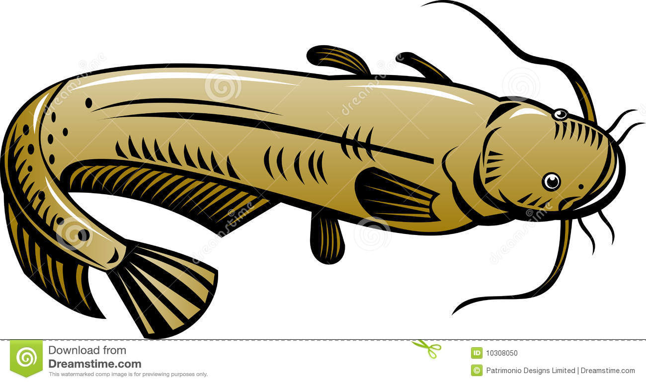 Clipart Catfish & Free Clip Art Images #20670.