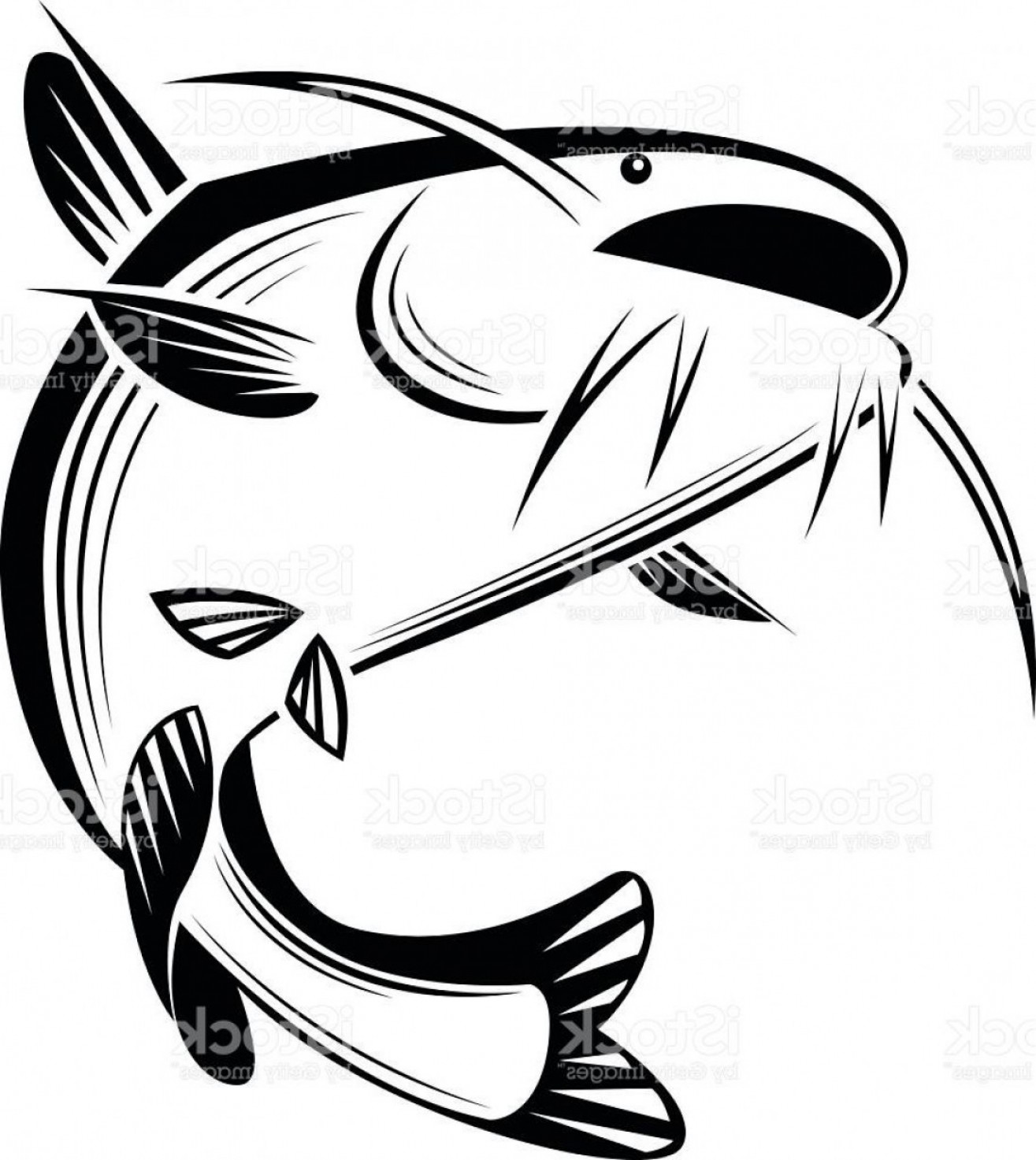 Best Free Graphic Catfish Vector Cdr.